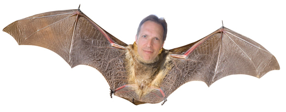 Reborn as a bat