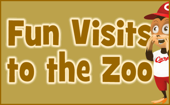 Fun Visits to the Zoo