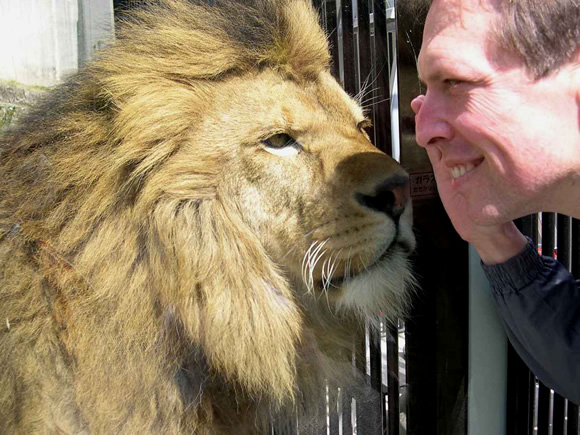 Adam befriends a lion.