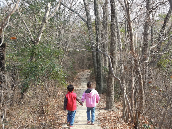 Waltzing through the woods.