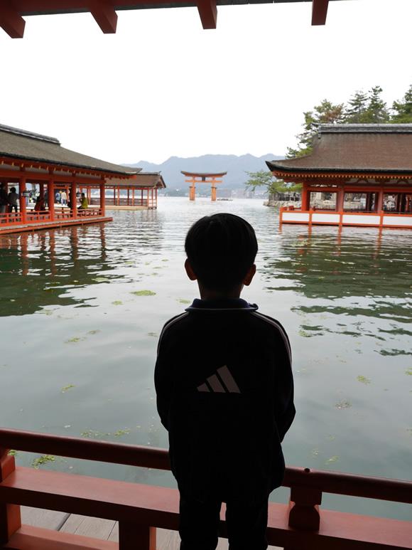 """Roy gazes at the """"floating gate"""" from Itsukushima Shrine."""