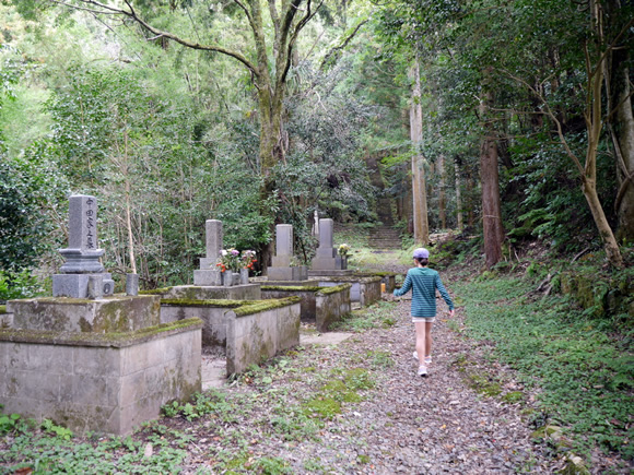 Path leading to the ruins of a temple