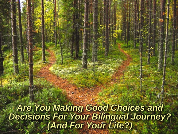 Are You Making Effective Choices and Decisions For Your Bilingual Journey? (And For Your Life?)