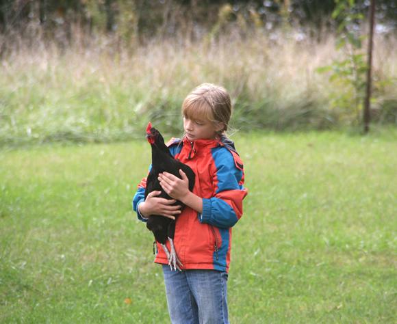 Zita taking care of her chicken.
